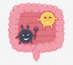 腸内ウィルス